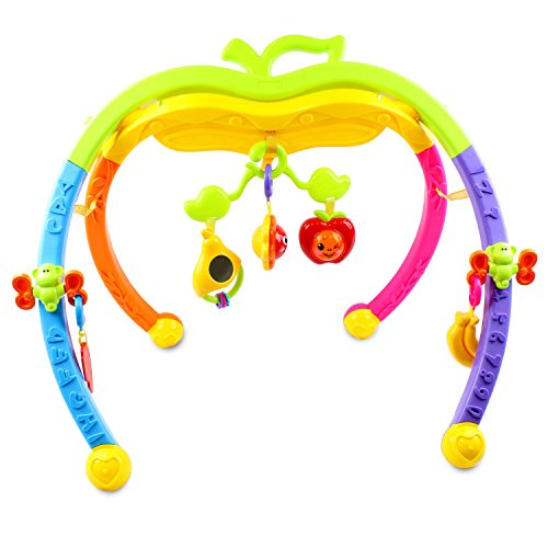 Transformania Toys Kids Apple Fun Interactive Baby Gym Newborn Developmental Activity Center Toy Children Boys and Girls