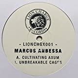 Marcus Anbessa - Cultivating Axum / Unbreakable Cages - Lion Charge Records - LIONCHGX001