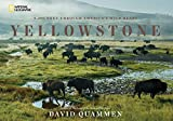 img - for Yellowstone: A Journey Through America's Wild Heart book / textbook / text book
