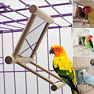 Blessed family Birds Toy for Cage,Parrot Hanging Swing with Mirror,Natural Wooden Play Toys, Pet Bird Cage Accessories…