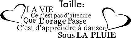 Amazon Com French Citation De La Vie Vinyl Wall Art Decals