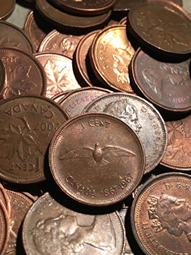 Roll Canadian Cents Canada Pennies 50 Coins Set 1940's to Present Great for Collectors