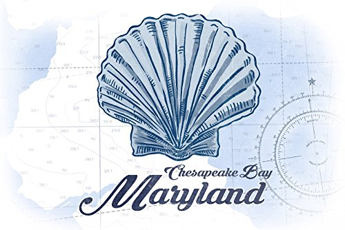 Chesapeake Bay, Maryland - Scallop Shell - Blue - Coastal Icon (12x18 SIGNED Print Master Art Print w/Certificate of Authenticity - Wall Decor Travel Poster)