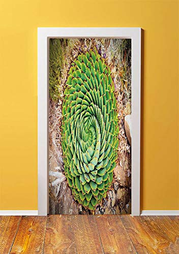 Plant 3D Door Sticker Wall Decals Mural Wallpaper,National Flower of Lesotho South of Africa Aloe Polyphylla Spinning Spiral Aloe Vera,DIY Art Home Decor Poster Decoration 30.3x78.4919,Multicolor
