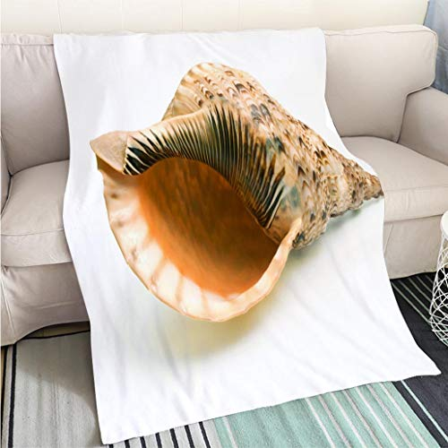BEICICI Art Design Photos Cool Quilt Photo of a Tritons Trumpet Seashell on White Background Fashion Ultra Cozy Flannel ()