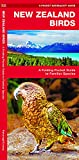 New Zealand Birds: A Folding Pocket Guide to Familiar Species (Pocket Naturalist Guides)