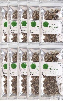 【60%OFF】 モリンガ種 1000~1100粒 農業法人「しまのだいち」がアフリカのモリンガ農園に栽培委託しました。【無農薬品】 B076CY8Y9Q B076CY8Y9Q, ツガマチ:4c10abc0 --- svecha37.ru