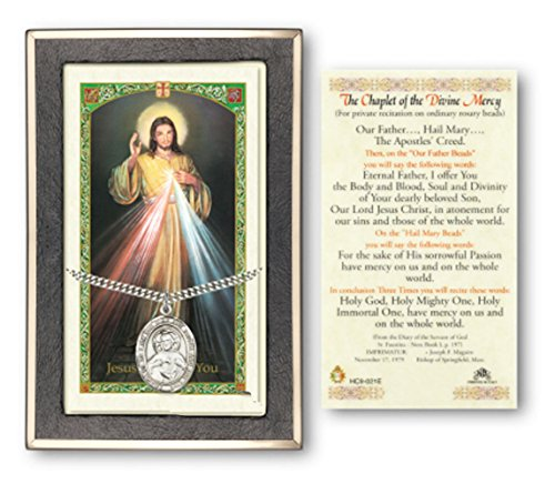 Sterling Silver Scapular Medal on a 24 Inch Heavy Curb Chain with a The Chaplet of the Divine Mercy Prayer Card.
