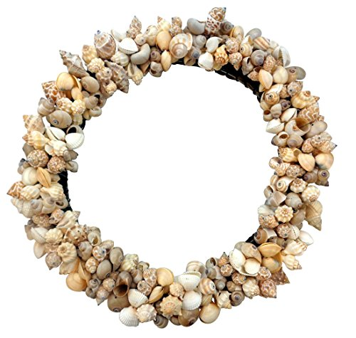 Assorted-Shell-Wreath-on-Vine-Base