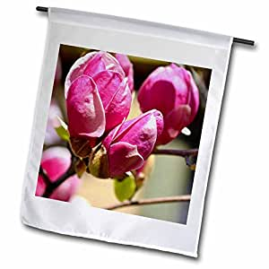 PS Flowers - Blooming - Pink Tulip Tree Flowers - Spring Photography - 18 x 27 inch Garden Flag (fl_51883_2)