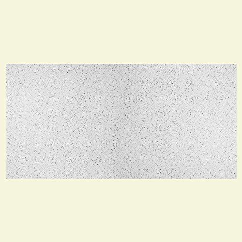 Genesis Easy Installation Printed Pro Lay-In White Ceiling Tile / Ceiling Panel, Carton of 10 (2' x 4' Tile) - Rust Vinyl Flooring