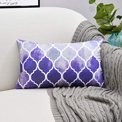 NATUS WEAVER Cozy Bolster Pillow Case Cover Couch Bed Sofa Manual Hand Painted Colorful Geometric Trellis Chain Print 12 X 20 Inches Main Grey Purple ()