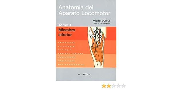 Anatomía del Aparato Locomotor. Tomo 1. Miembro inferior: Amazon.es ...