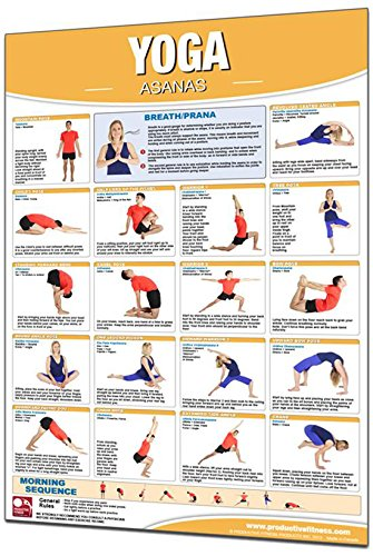 Productive Fitness Laminated Fitness Poster - Yoga Exercises - Yoga Asanas - 24