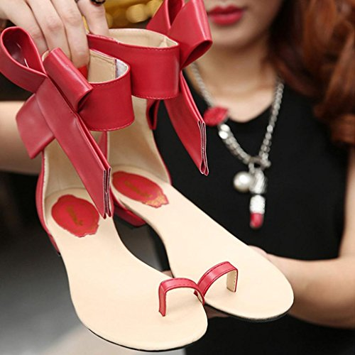 Lolittas Black Flat Sandals Flip Flops Ladies,Smart Wedding Slim Personalised Embellished Toepost Slingback Cushioned Sliders Shoes Size 2-7 Red