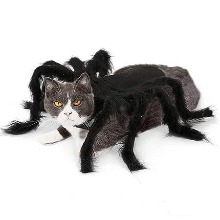 YZZ Disfraz De Disfraz De Araña De Gato para Mascotas De Halloween ...
