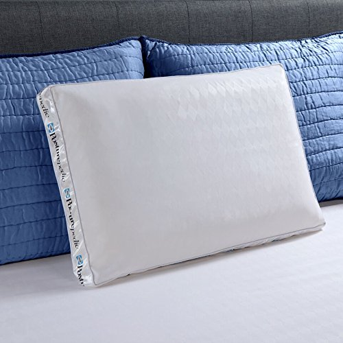 Sealy Bed Pillows - Sealy Posturepedic Memory Foam Bed Pillow, Standard