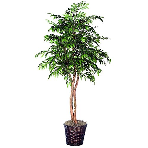 (Vickerman THE1460 Green Smilax Heartland Tree, 6')