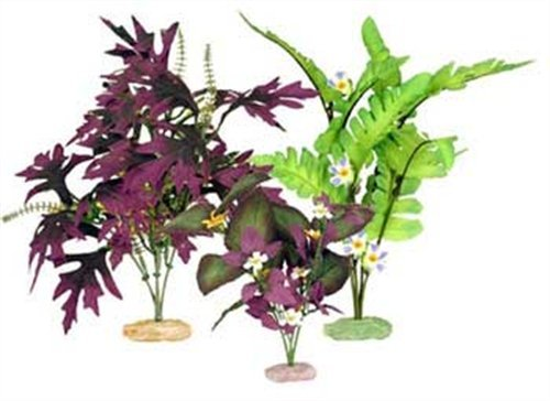 - Vibran-Sea So. American Flowering Cluster Aquarium Plant Assortment