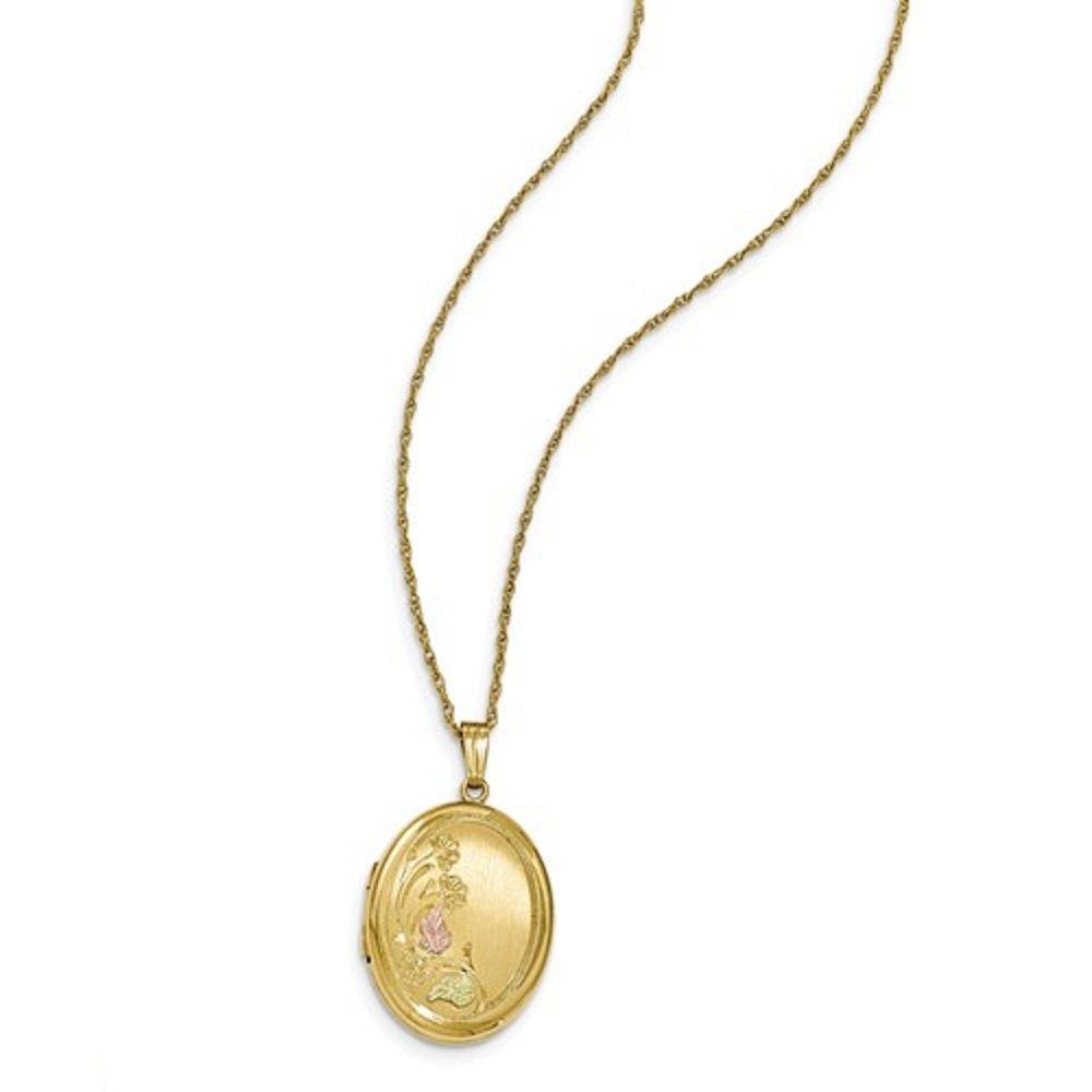 Gold-Filled Black Hills Locket and Leaf Pendant, 18''
