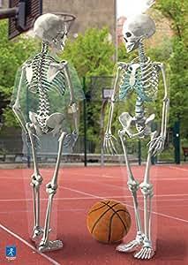 Learning Resources - Póster del interior del cuerpo humano [Importado de Reino Unido]