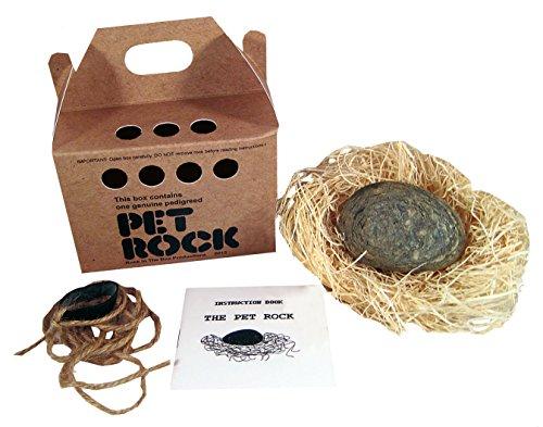 Pet Rock - 70s Novelty Joke House Broken With Walking Lease