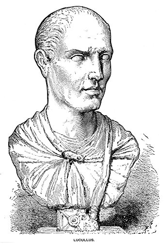 Posterazzi Lucius Licinius Lucullus/N(117-58/56 B.C General. Wood Engraving 19Th Century of A Roman Marble Bust. Poster Print by, (24 x 36)