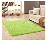 Plush Microfiber Area Rugs,Fluffy Long Fur Cozy Floor Carpet,Water Absorbent and Anti Slip Bath Mat,Decorative Solid Shaggy for Bedroom,Living Room,Sitting Room (Green1, 30'' x 46'')