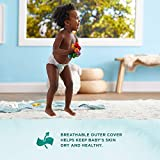 Amazon Brand - Mama Bear Gentle Touch