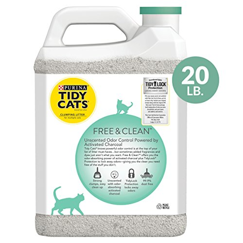 Buy worlds best cat litter review