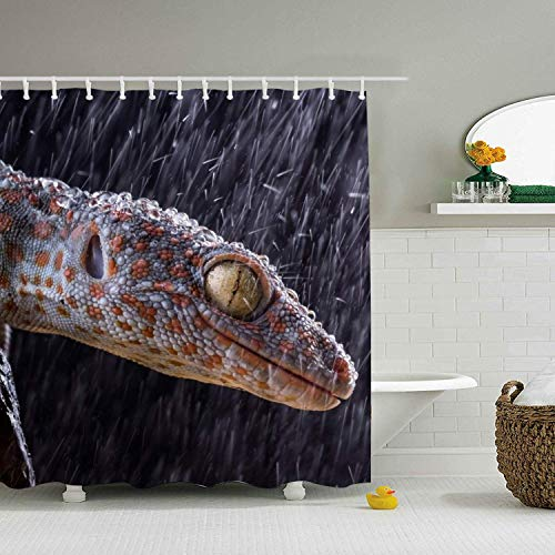 (AshasdS Tokay Gecko Geckoss Bathroom Decor Shower Curtain Design Curtain Polyester Waterproof Fabric with 12 Rust Proof Hooks,72 X 72 Inches)