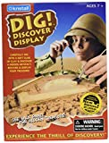 Dig! Discover Archaeology USA