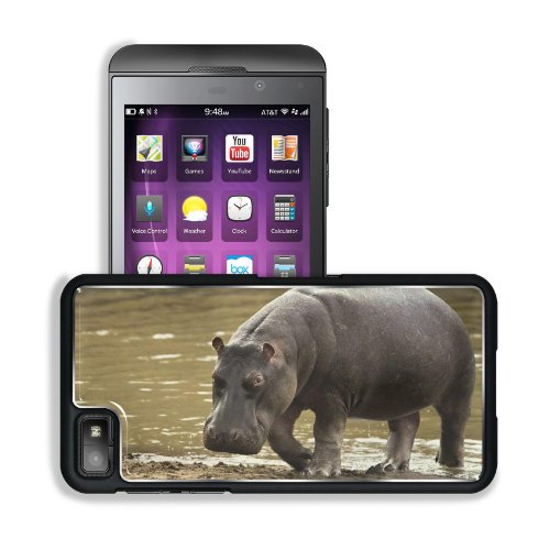 Hippopotamus Beach Water Gray Huge BlackBerry Z10 Snap Cover Premium Aluminium Design Back Plate Case Customized Made to Order Support Ready 5 3/16 inch (131mm) x 2 5/8 inch (67mm) x 4/8 inch (13mm) Liil BlackBerry Z 10 Professional Metal Cases BlackBerry_Z10 Touch Accessories Graphic Covers Designed Model HD Template Wallpaper Photo Jacket Wifi 16gb 32gb 64gb Luxury Protector Wireless Cellphone Cell Phone