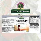 Glucosamine Chondroitin MSM Liquid with Natural