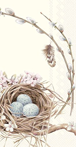 boston-international-16-count-3-ply-paper-guest-towel-napkins-birds-nest-with-eggs