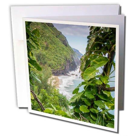 3dRose Danita Delimont - Rivers - Hawaii, Kauai, Napali, Napali Coast State Park, Pacific Ocean - 12 Greeting Cards with envelopes (gc_278936_2)
