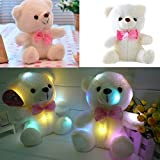 Creative Teddy Bear Doll Colorful LED Glow Luminous Plush Stuffed Toy Birthday Valentines Gift 8.6 by COFFLED