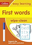 First Words: Wipe-Clean Activity Book