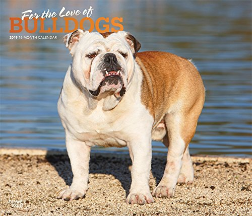 For the Love of Bulldogs 2019 14 x 12 Inch Monthly Deluxe Wall Calendar with Foil Stamped Cover, Animal Dog Breeds (Multilingual Edition)