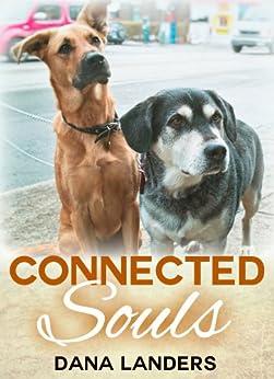 Connected Souls Dana Landers ebook product image