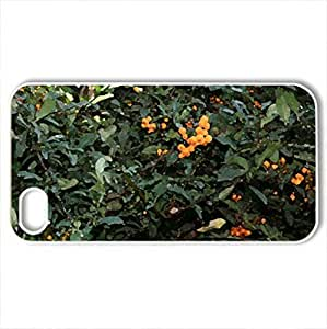 Amazing day at Edmonton garden 47 - Case Cover for iPhone 4 and 4s (Flowers Series, Watercolor style, White)