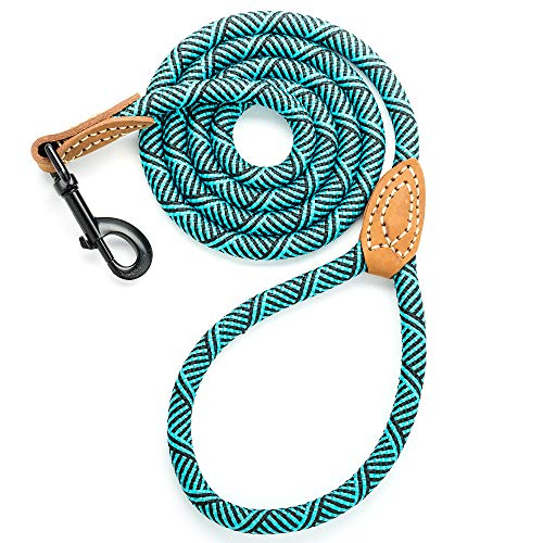 Mile High Life Leather Tailor Reinforce Handle Mountain Climbing Dog Rope Leash with Heavy Duty Metal Sturdy Clasp (Turquoise Green, 6 FT)