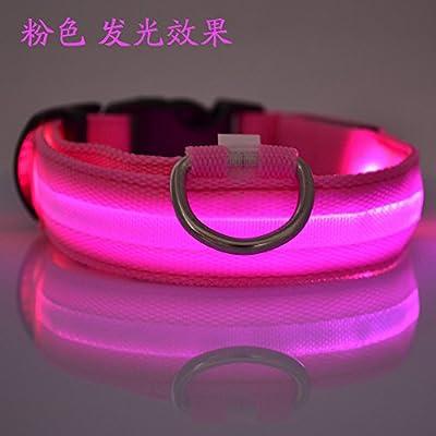 Eagwell 2.5cm Width Nylon LED Dog Night Safety LED Collar Flashing Light up Circular Pendant Pet Collar S M L XL
