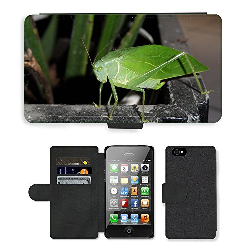 Just Phone Cases PU Leather Flip Custodia Protettiva Case Cover per // M00127700 Nature Insect CatÃdida // Apple iPhone 4 4S 4G