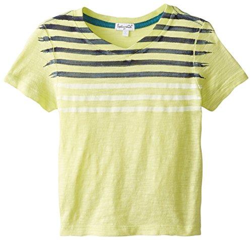 Splendid Slub Jersey Top (Splendid Big Boys' Short Sleeve Basic Slub Jersey V-Neck Toddler, Light Green, 2T)