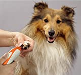 Doommy Electric Pet Nail Grinder, Paw Trimmer