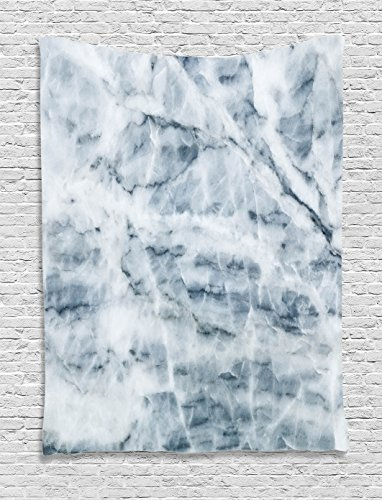 Apartment Decor Tapestry by Ambesonne, Natural Marble Display Cloud-Like with Hazy Scratches Antique Artful Print, Wall Hanging for Bedroom Living Room Dorm, 60WX80L Inches, Blue - Blue Grey Marble