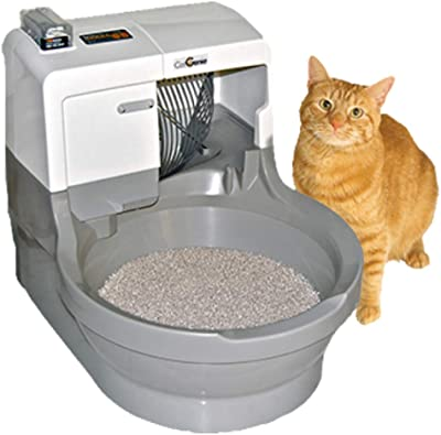 Cat_getting_out_of_Catgenie_Self_Flushing_Litter_Box