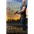 After the Storm (KGI series Book 8)