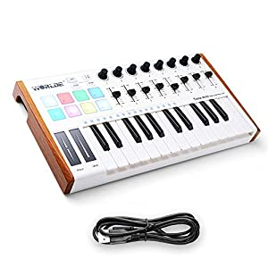 Worlde 25 Key USB Portable Tuna Mini MIDI Keyboard MIDI Controller with 8 Knobs, 8 Drum Pads, 8 Faders, Wood Imitation…